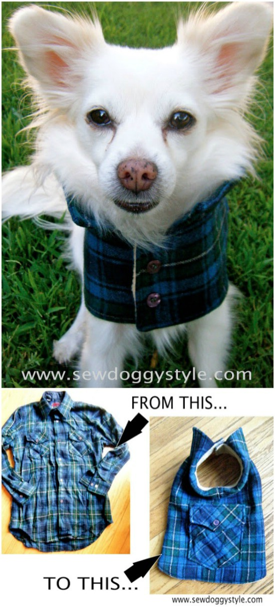 Csináld magad (DIY) Flanelos kutya kabát