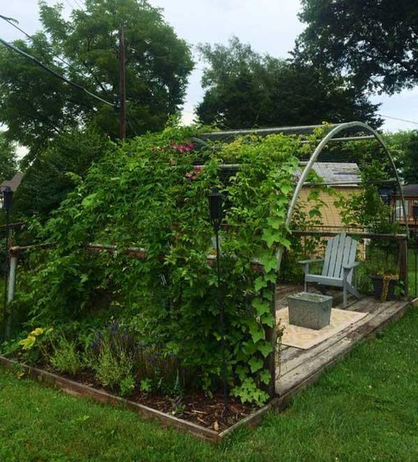 Újrahasznált trambulinkeretből kreálj egy szerkezetet, amit be tud fedni a lilaakác, és kapni fogsz egy pompás kerti árnyékolót