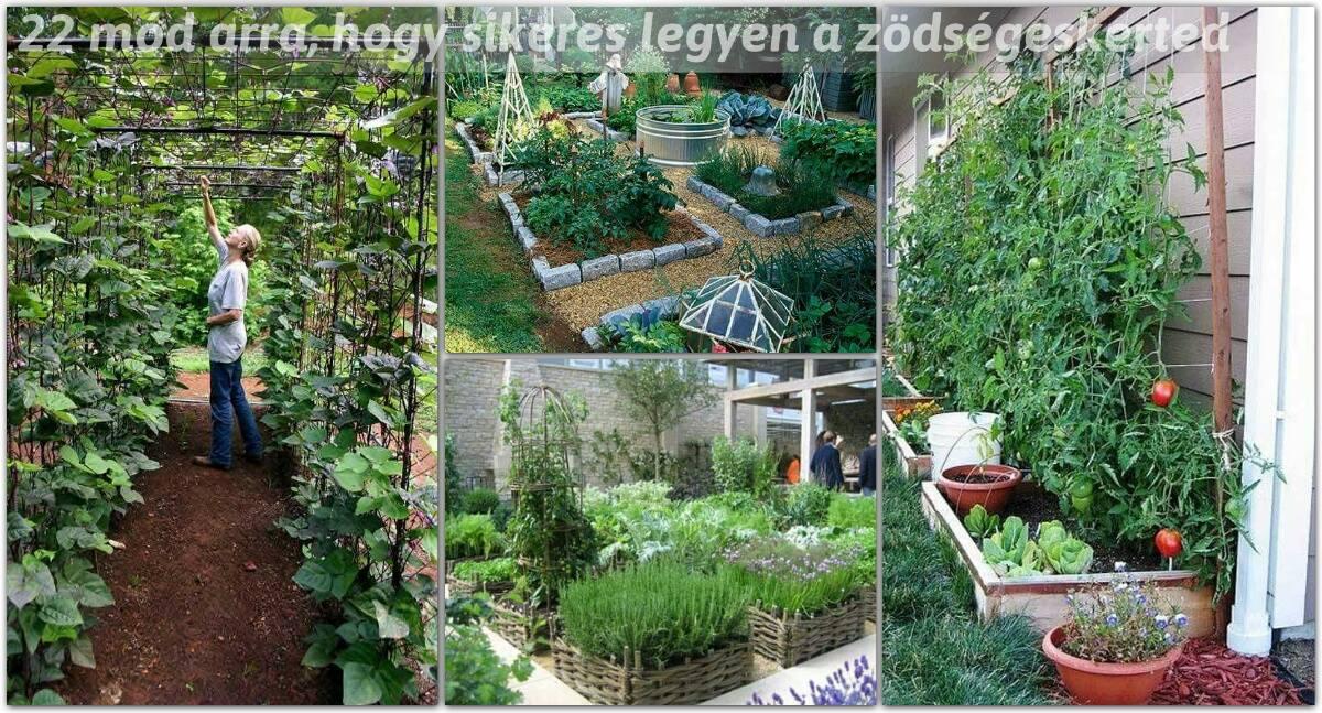 22 mód arra, hogy sikeres legyen a zöldségeskerted