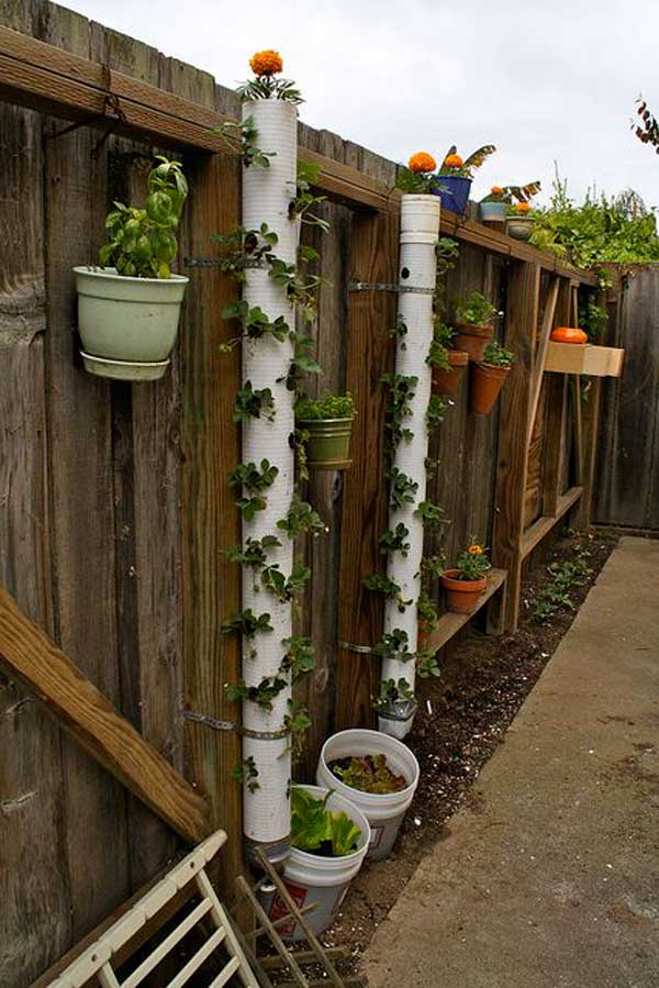 5. Építs eper tornyot a kertbe