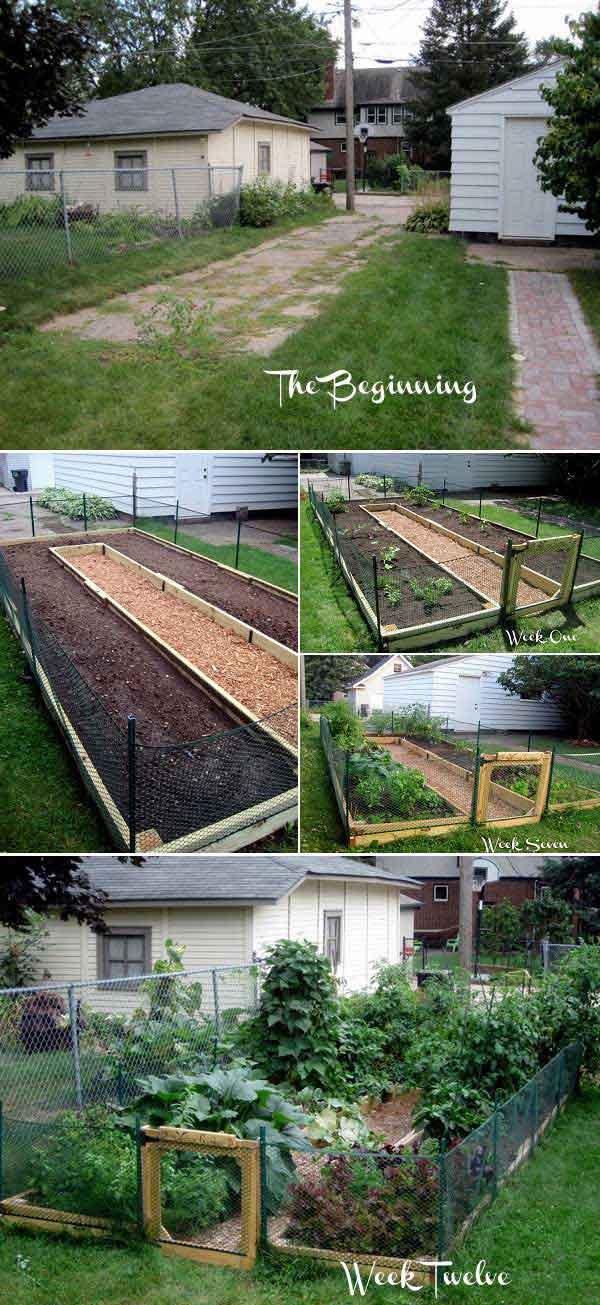 5. Az U-alakú emelt kert hatékonyan kihasználja a korlátozott helyet