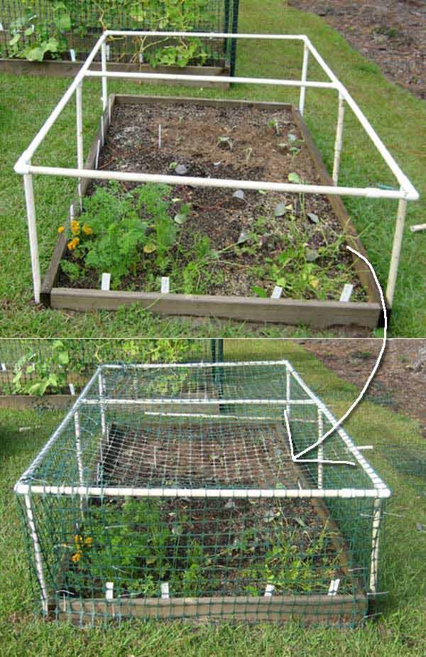 6. Csinálj védőburkot az ültetőágy köré