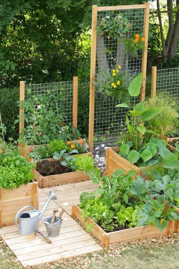 8. A drótváz nagyszerű lehetőség egy függőleges növekvő kert építésére egy apró udvarban