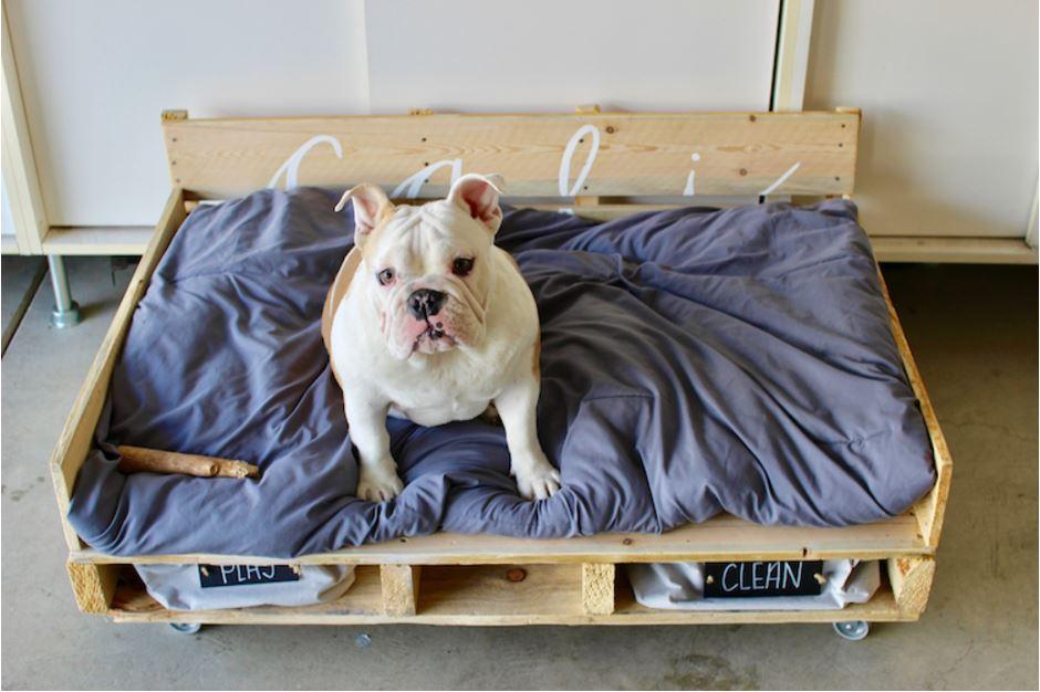 Helyezz bele takarót vagy kutyamatracot
