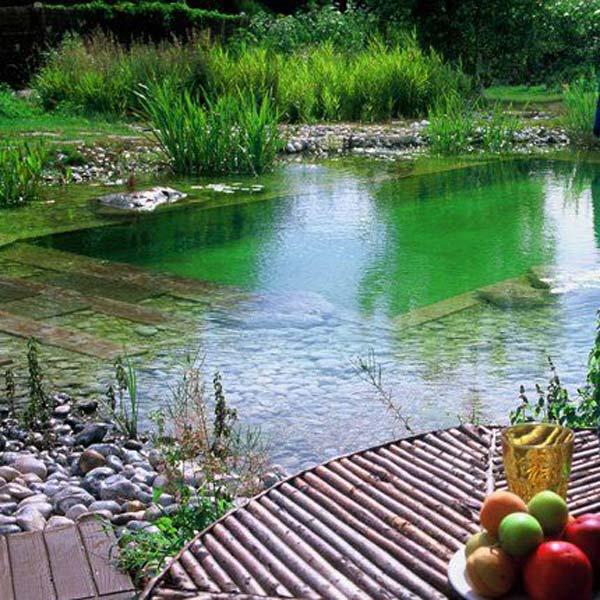24 udvarban lévő természetes medence, amelyet azonnal akarni fogsz  Kreatív csirke