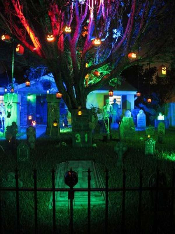 6. Igazi temető